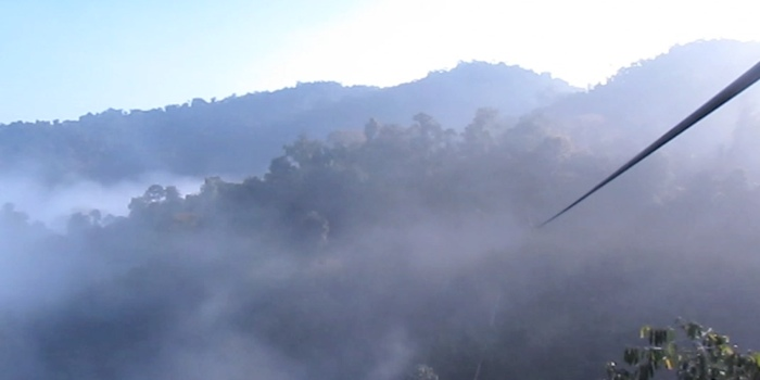 Ziplining in the morning mist