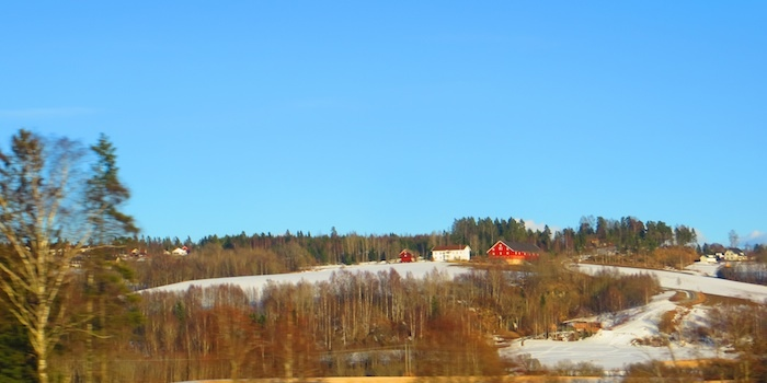 First taste of Norwegian country side on the way to Oslo