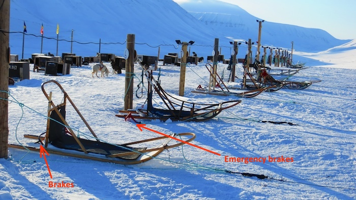 The anatomy of a dog sled