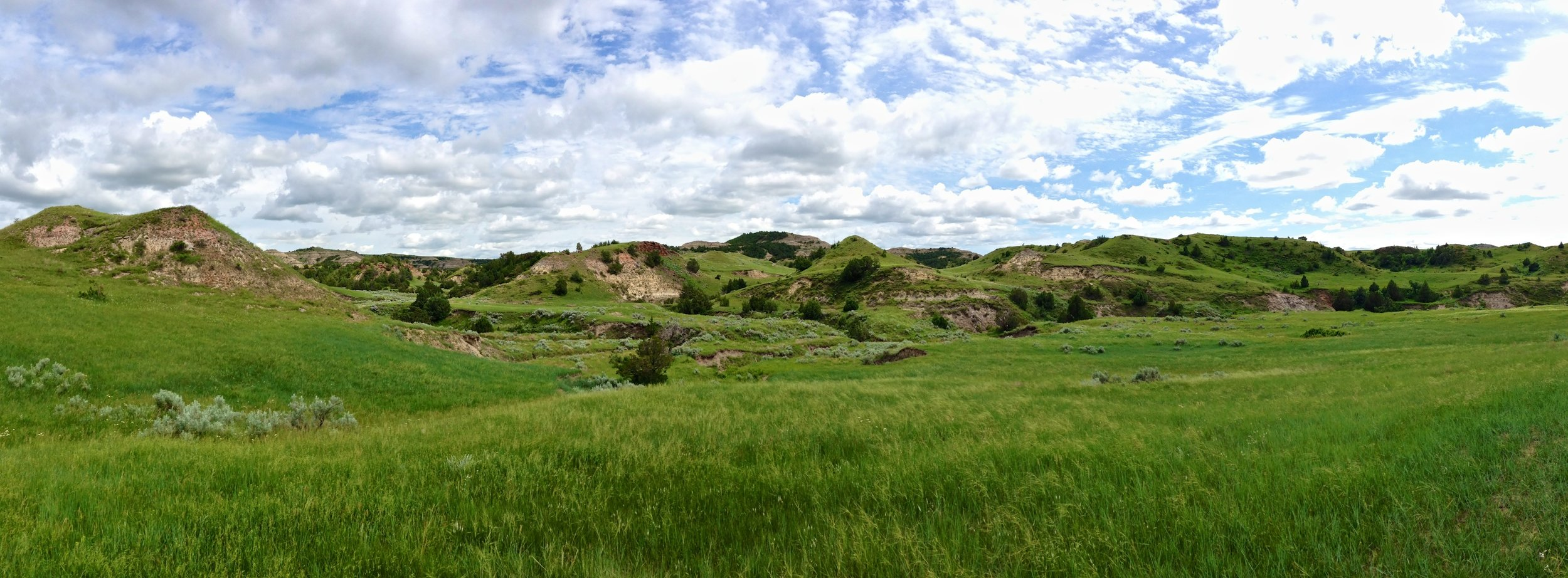 North Dakotan Badlands in the Theodore Roosevelt National Park