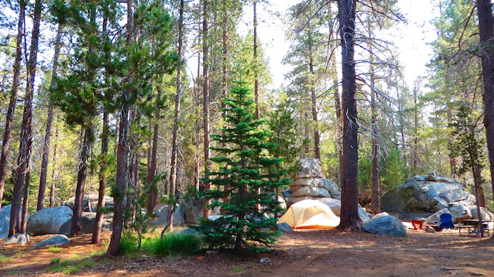 Yosemite Beautiful campground setting. At some sites...