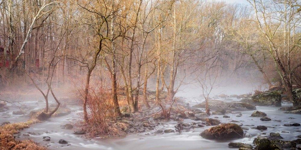 unami-creek-fog-morning-1.jpg