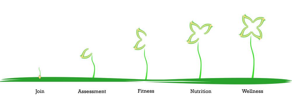 UR Fit growth graphic-flattened.jpg