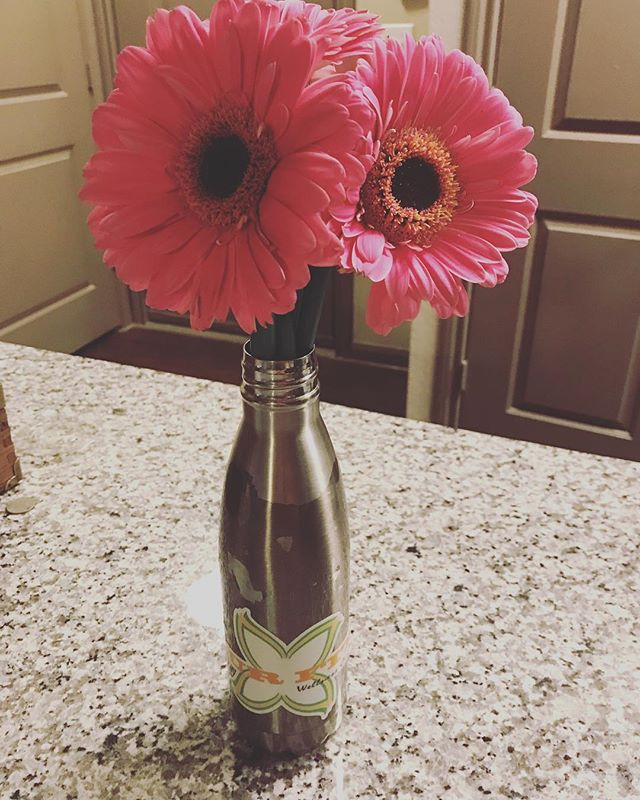 Today I celebrated my 2 year anniversary as Xavy's partner. I can't imagine having anyone else to partner with (even through our ups and downs- we will be a team!) Thank you for a fantastic two years and my favorite flowers! And here's to MANY MORE! @heatherbennetttraining