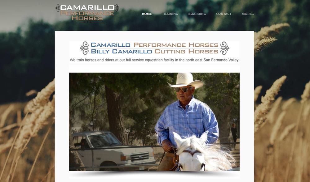 Camarillo Performance Horses