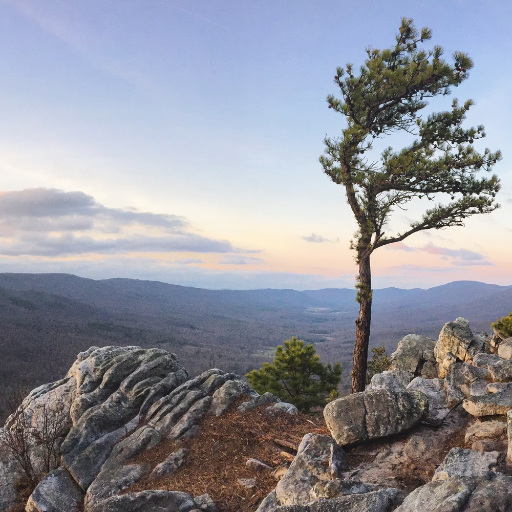 Tibbet Knob overlook