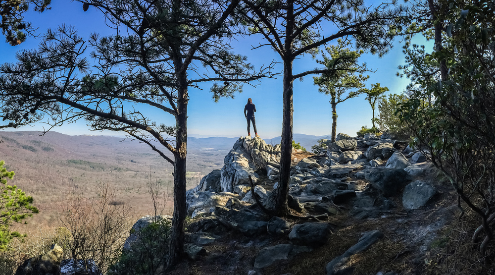 Tibbet Knob Summit, George Washington National Forest, West Virginia