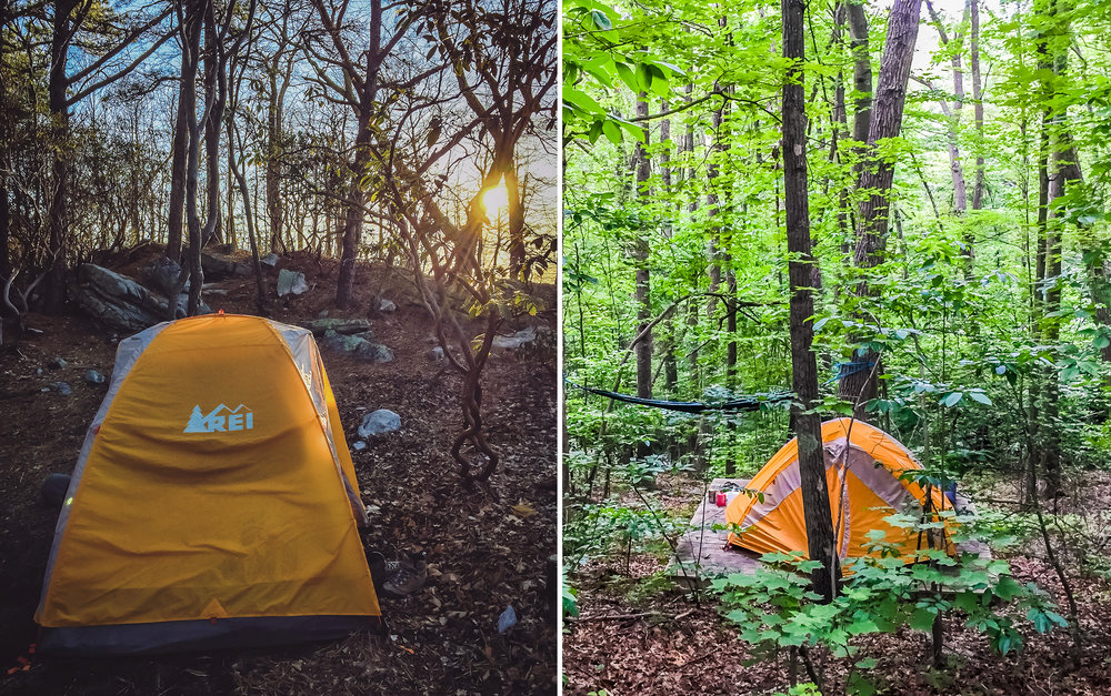 Consider sun and wind exposure when placing your tent
