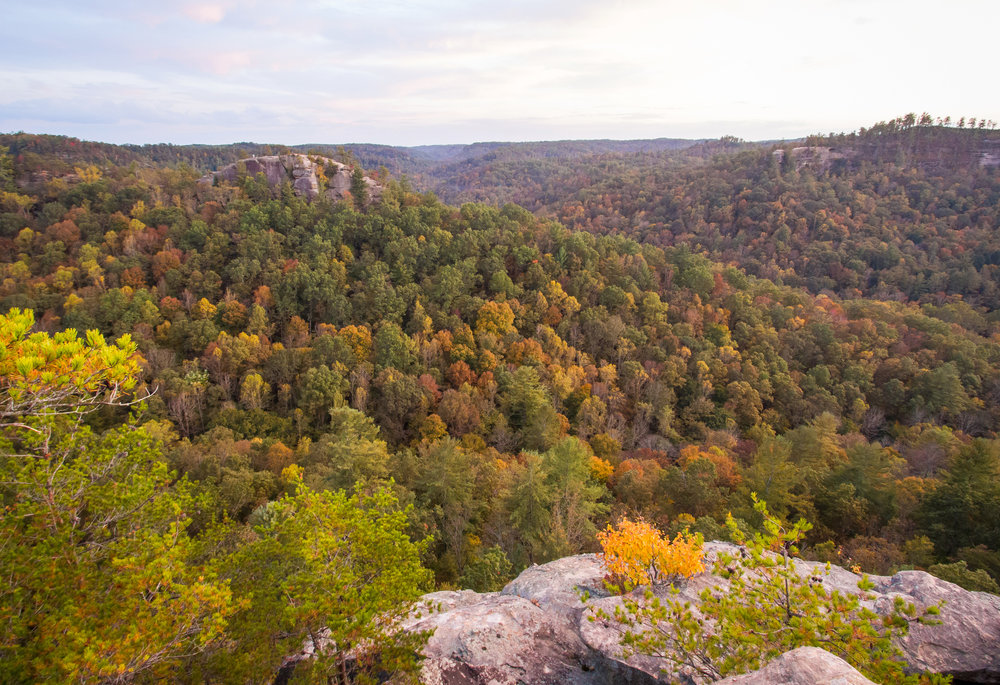 Views from Chimney Top in Red River Gorge, Kentucky