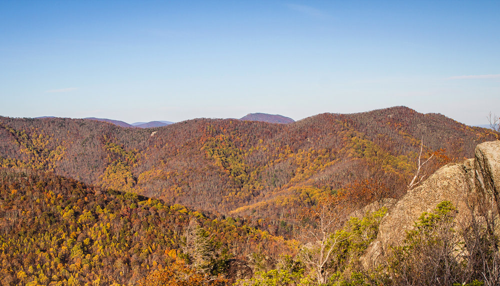 Fall colors at Bear Church Rock, Shenandoah, Virginia
