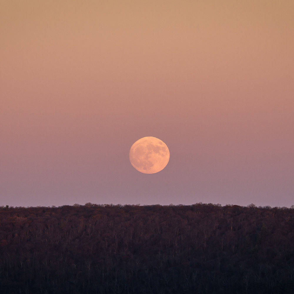 """Supermoon"" rise at Big Schloss peak, George Washington National Forest"