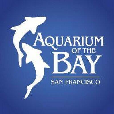 aquarium of bay logo.jpeg