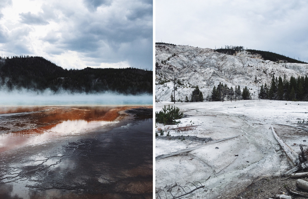 Alia Serban Journal - Yellowstone National Park