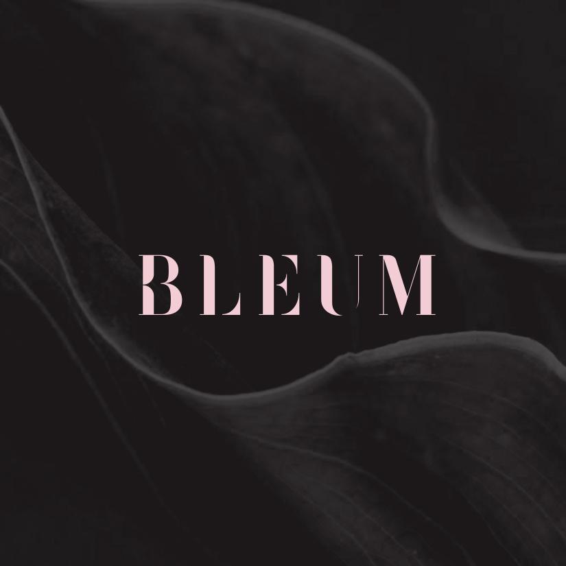 Bleum_8.jpg