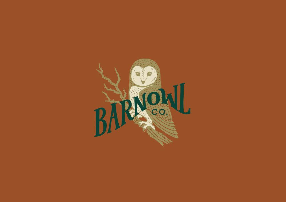Barnowl.jpg