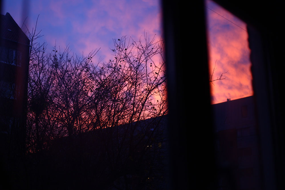 dawn in amager.jpg