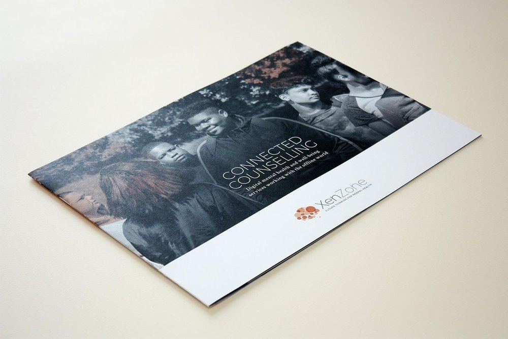 xenzone_brochure_01.jpg