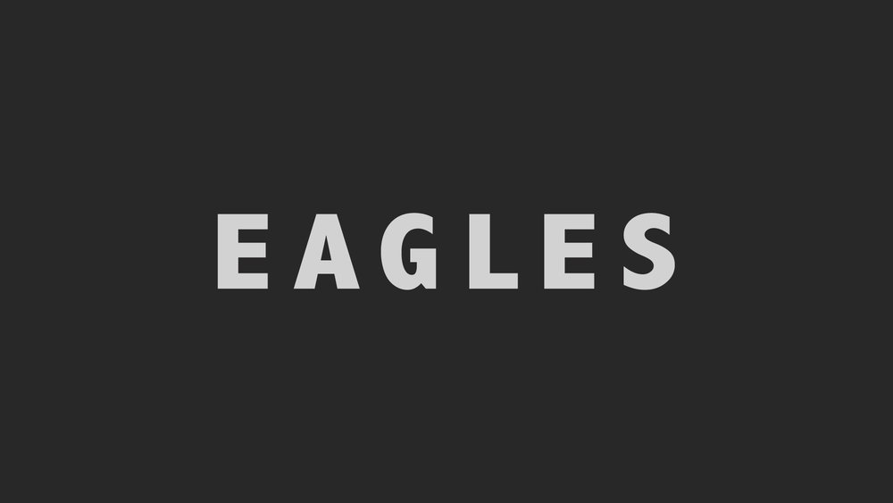 EAGLES / WEB-SERIES A Youth Drama Series created by producer Stefan Henriksson. In early development.