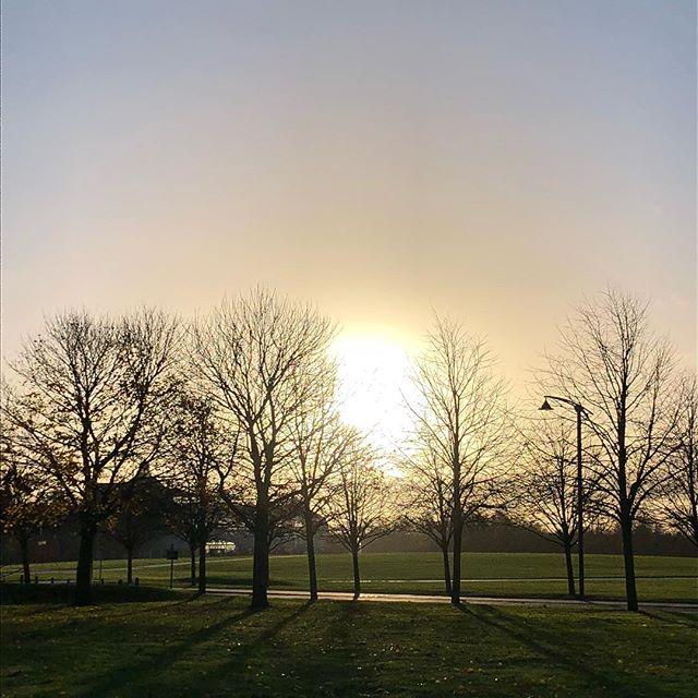 Sunny morning in Glasgow ☀️#glasgowgreen #itstheweekend