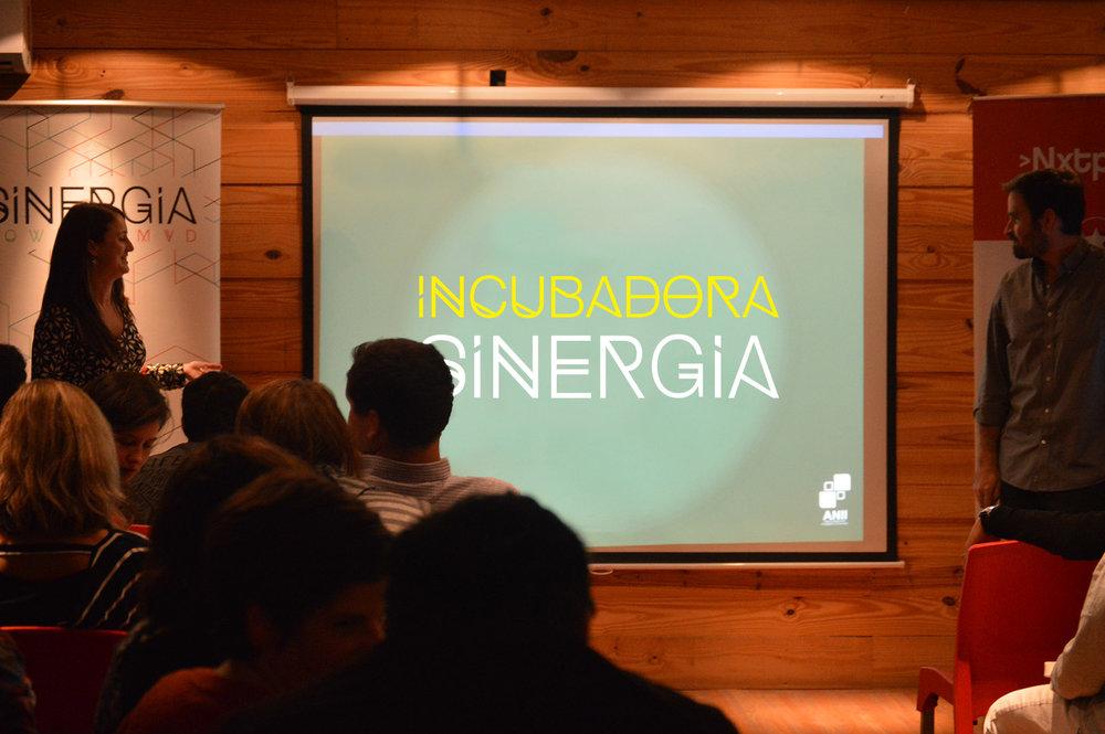 DSC_0120_incubadora.jpg