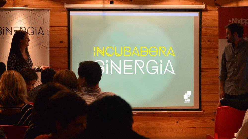 incubadora-sinergia.jpg
