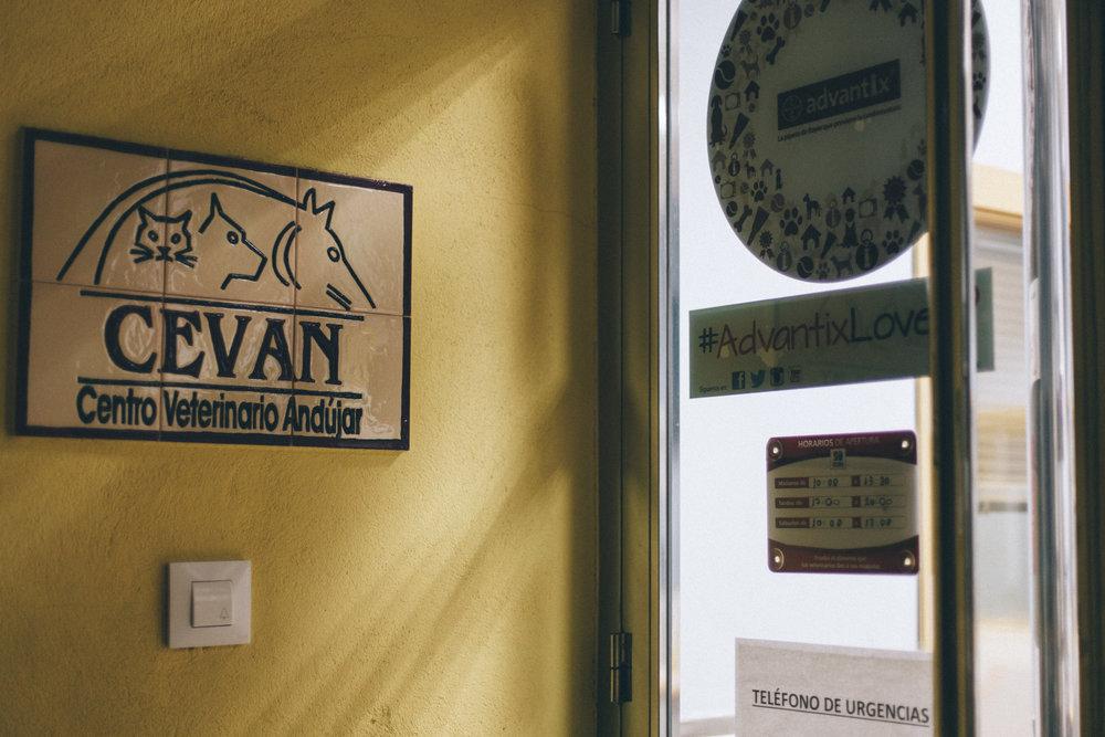 Cevan_17.11.16_009.JPG