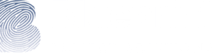 Blueprint Project Solutions