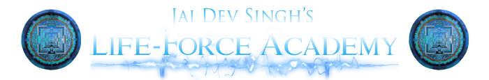 logo-life-force-academy-logo.png
