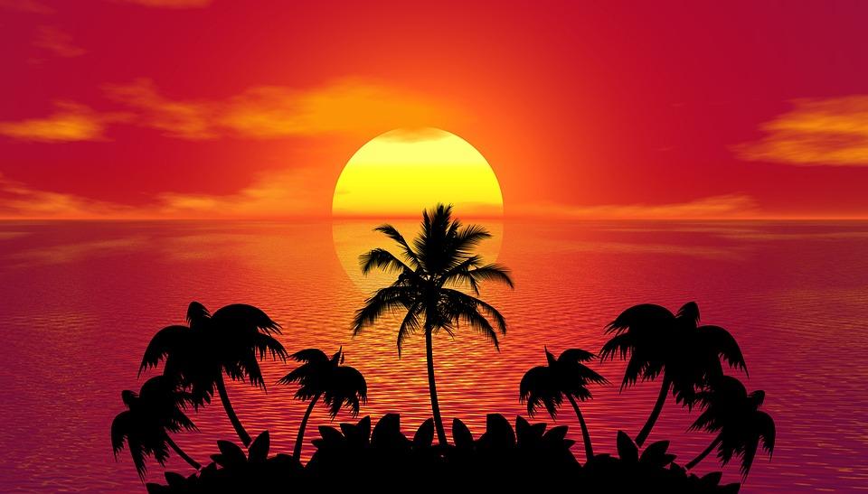 Temafest: Tropisk aften    Les mer