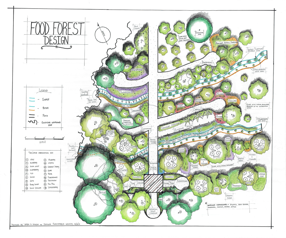 Verity Food Forest Design - No Address - 4328 x 3600 pixels.png