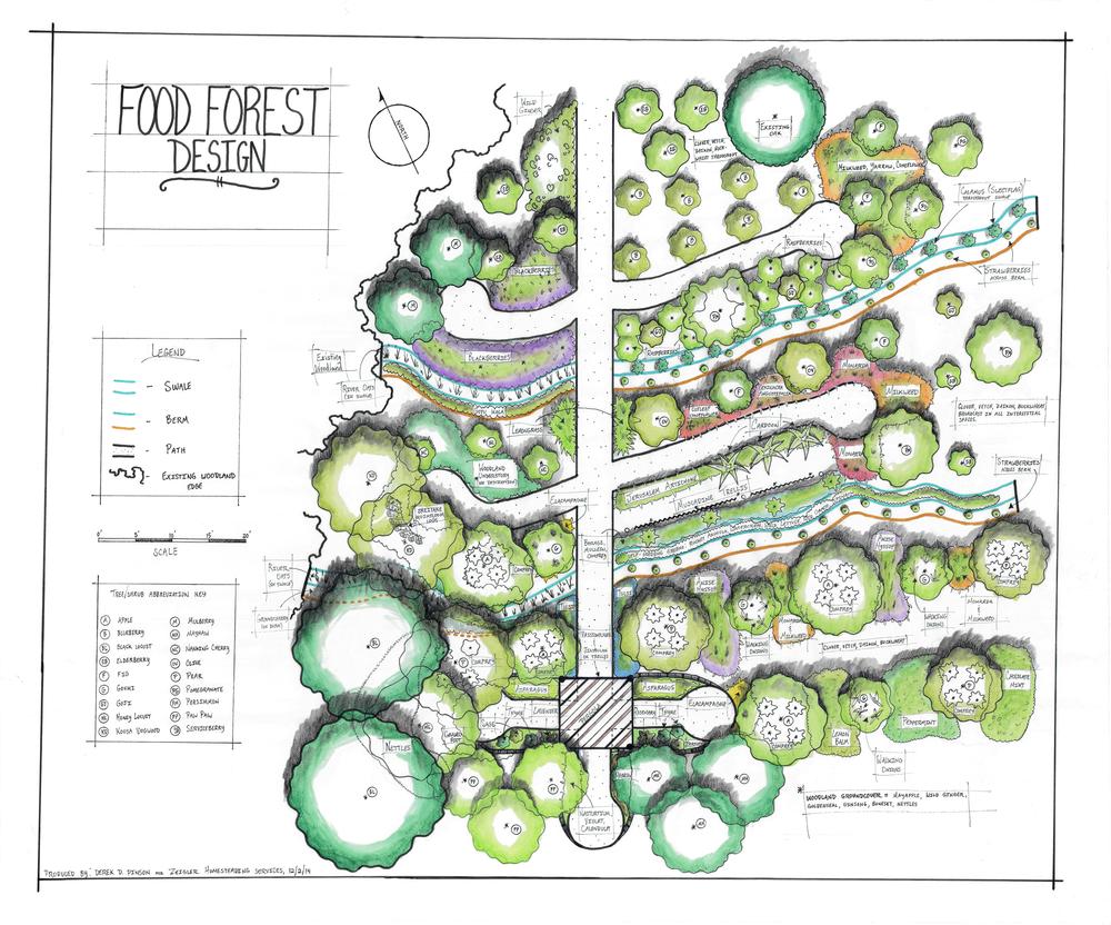 Verity Food Forest Design - No Address - 4328 x 3600 pixels.png