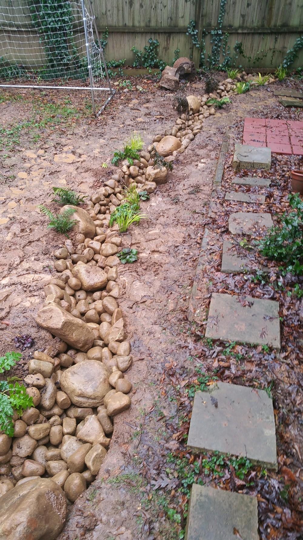 Krista rainwater garden.jpg