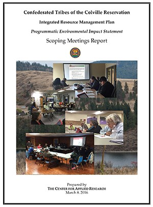 Scoping Meetings Report