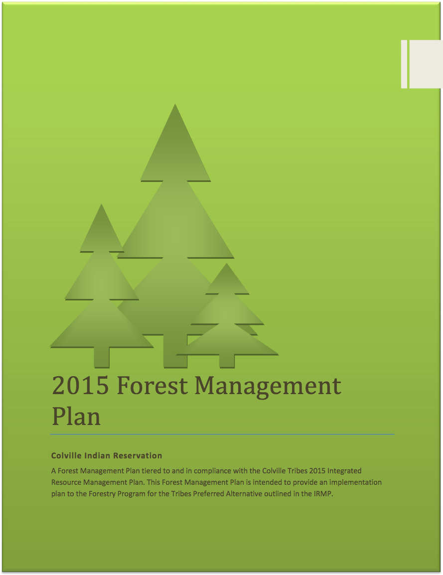 The Forest Management Plan