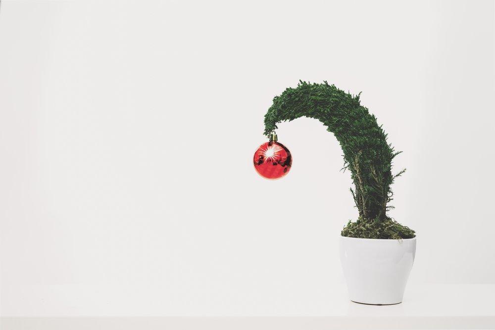 bonsai-ceramic-christmas-1048041.jpg