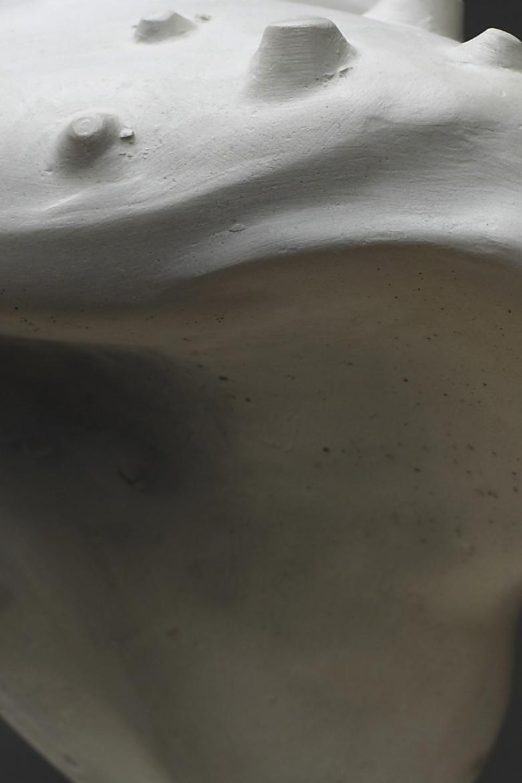 hoi polloi (008) 2010