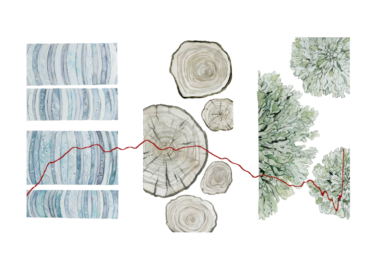 Proxies for the Past is inspired by the universal unknowns, which humans try to solve by using materials such as ice cores, tree rings, and lichens to date past climate events. Nature reveals some of its' secrets in these concentric forms, allowing us to determine information such as the data depicted: the average global temperature of Earth from 11,000 years ago to present. Thus, natural materials help us to understand a small portion of Earth's history.   Reference: https://www.climate.gov/news-features/climate-qa/what%E2%80%99s-hottest-earth-has-been-%E2%80%9Clately%E2%80%9D