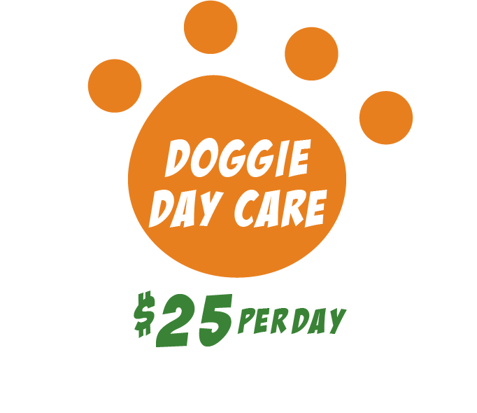 PW_doggie_daycare25_1@2x.png