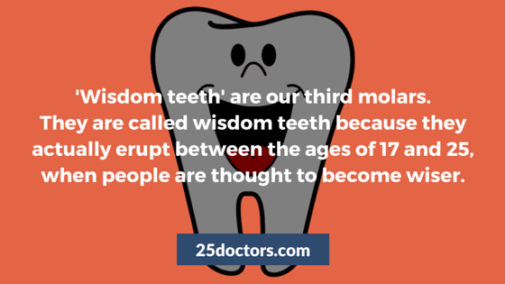 why our third molars are called wisdom teeth
