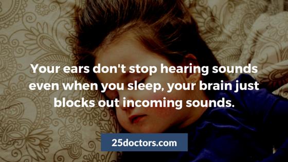 amazing ear fact