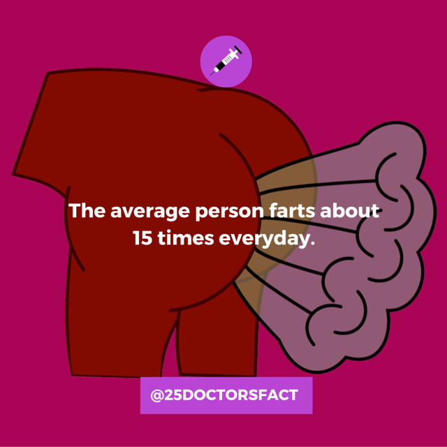 the average person farts 15 times a day