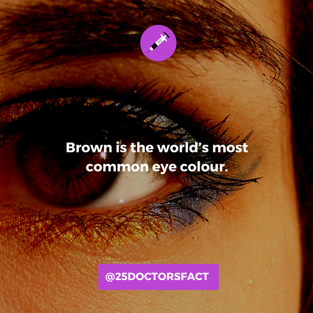 brown eye frequency