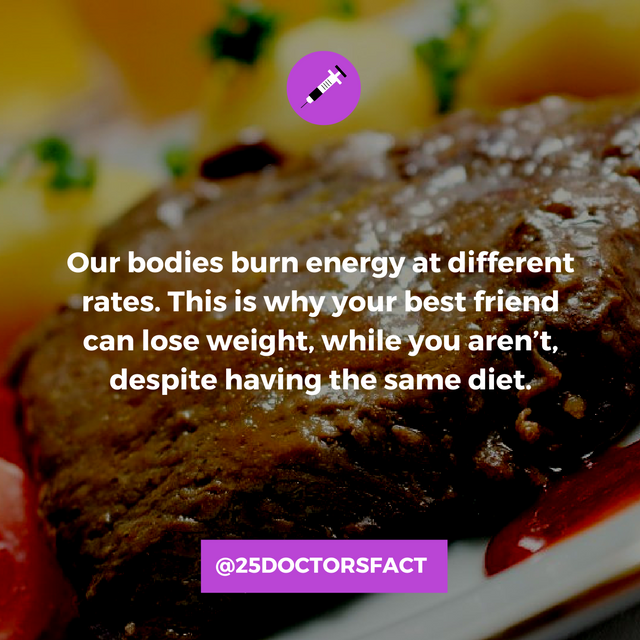 diets.png