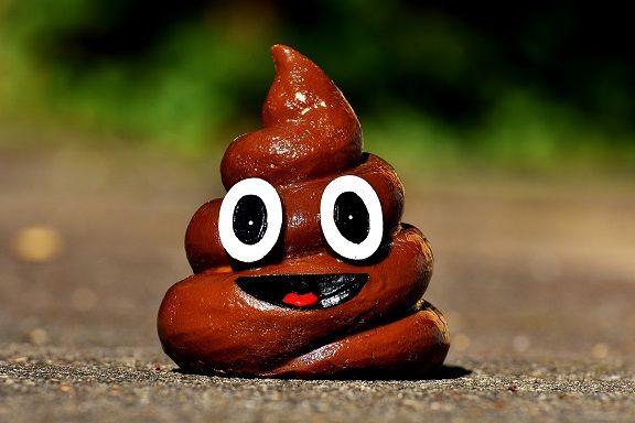 liquid poop (2).jpg