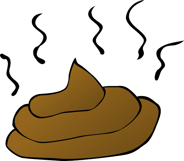 smelly greasy poop.png