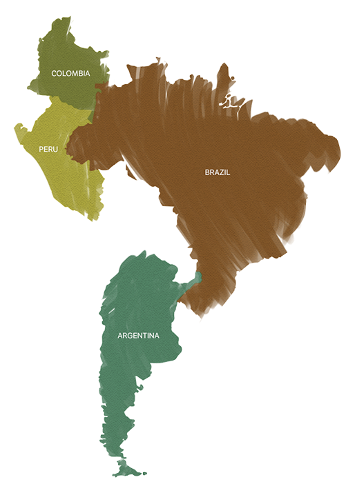 Custom map of South America in a hand painted style