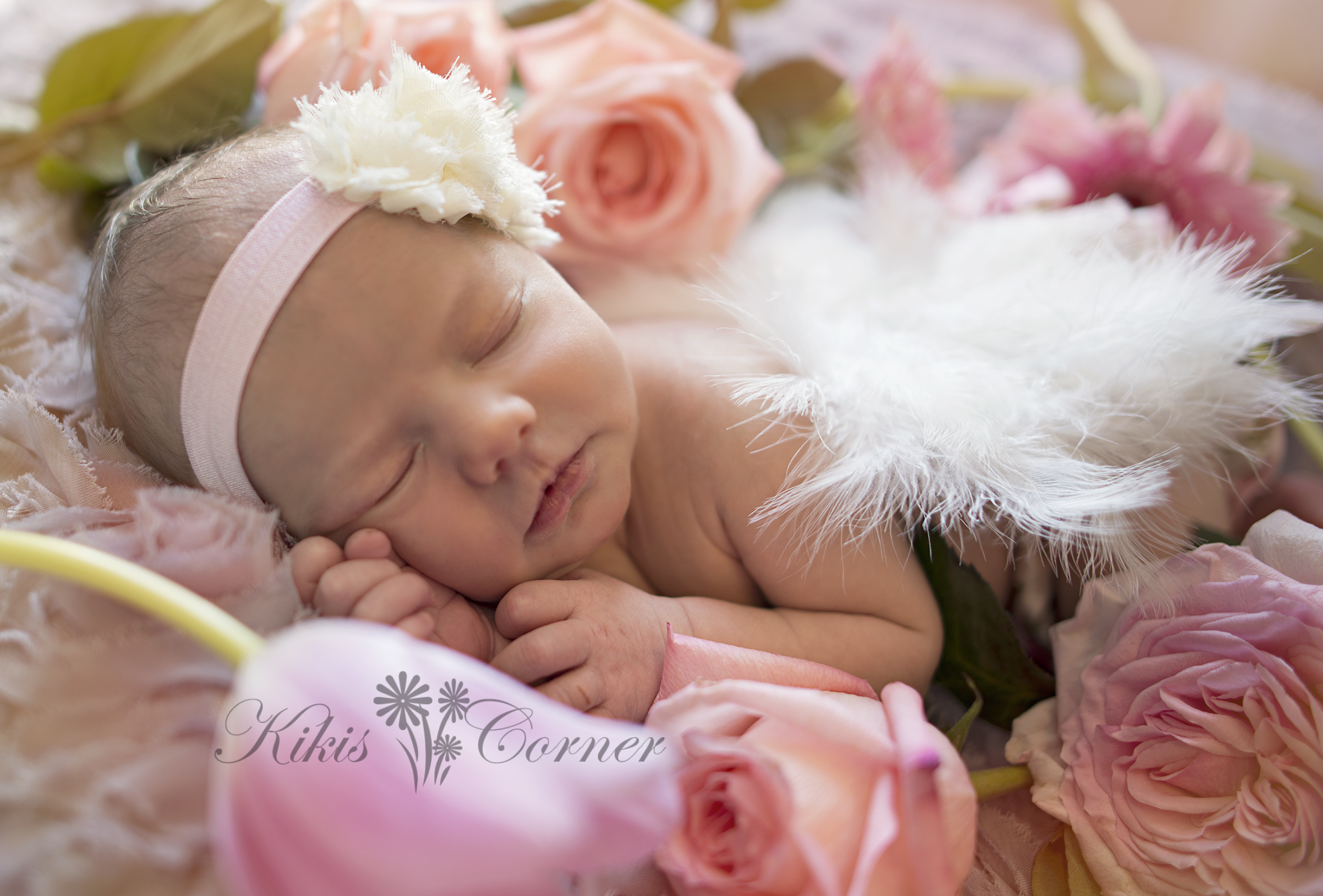 newborn with wings and roses