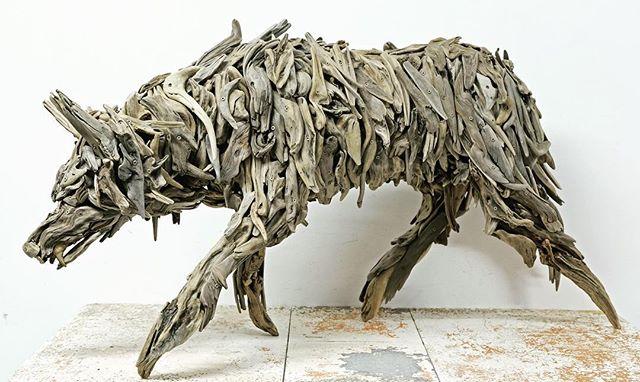 """Loyalty"" a coastal wolf. @madronagallery #wolf #coastalwolf #pnwwonderland #pnwbc #art #driftwood #bronze #westcoast #onbooooooom"