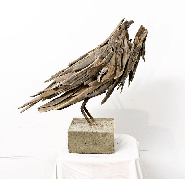 Process shot of building a raven for my upcoming show. #theartofconservation #bowenisland #driftwood