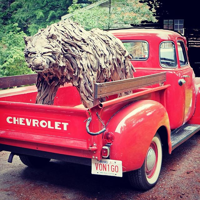 A work of art in a work of art! #1949Chevy #grizzlybear #theartofconservation #artopening #mountianculture